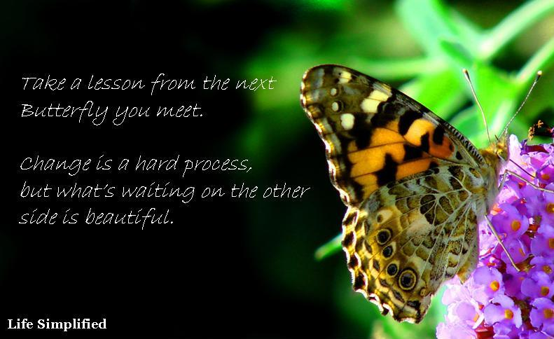 Butterfly Inspiration - Make the changes you want today