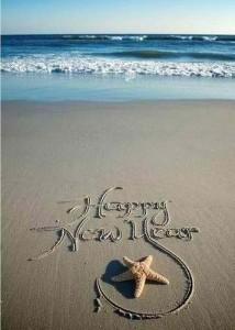 new year 2103