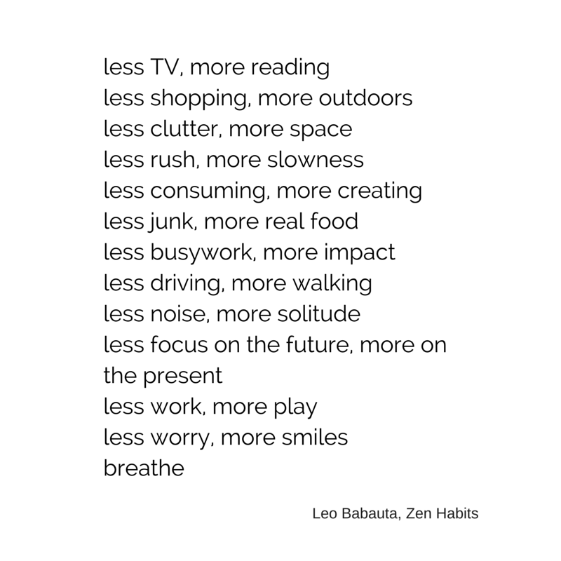 guide-to-life-leo-babauta-less-is-more