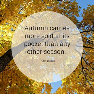 autumn-gold-priorities